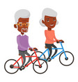 senior couple riding on bicycles vector image vector image