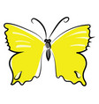 yellow butterfly on white background vector image vector image