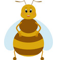 cartoon fat honey bee character vector image