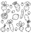 doodle of vegetable object hand draw vector image