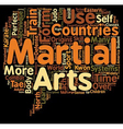 Martial Arts text background wordcloud concept vector image vector image