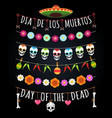 mexican dead day garlands vector image