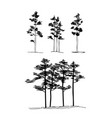 set of hand drawn set architect pine trees vector image