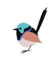variegated fairy wren bird vector image vector image