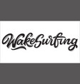 wake surfing lettering logo in graffiti style vector image vector image