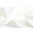 abstract polygonal pattern luxury background vector image