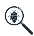 beetle under the magnifying glass insect icon vector image