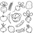 doodle of vegetables set hand draw vector image vector image