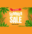 summer sale with tropical frame vector image vector image