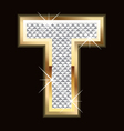 t bling bling vector image vector image