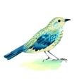 watercolor a bird on white vector image vector image
