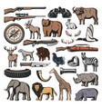weapon of hunting sport wild animals vector image vector image