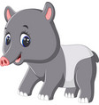 cute tapir cartoon vector image vector image