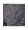 Dark Liver Lavender Abstract Low Polygon vector image vector image