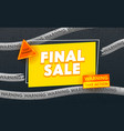 final sale advertising banner with typography on vector image