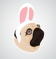 lady dog rabbit vector image vector image