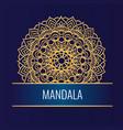 round golden mandala on white dark background vector image vector image