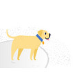 yellow cheerful dog breed labrador retriever vector image