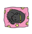 Cute doodle cat sleeps on the pillow vector image