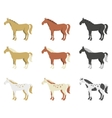 a set of horses of different breeds and color vector image vector image