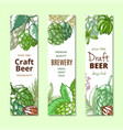 beer hop vertical banner hand drawn set vector image vector image