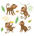 cute and funny monkeys set characters vector image