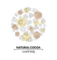 natural cocoa banner template with chocolate vector image vector image