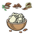 cocoa products hand drawn sketch doodle vector image vector image