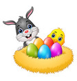 easter rabbit with chicks and colorful eggs in the vector image