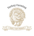 isolated vintage gold emblem for farm with turkey vector image vector image