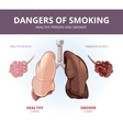 Lungs and alveoli of a healthy person smoker vector image vector image