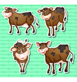 stickers cows on green background vector image vector image