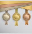 award badges vector image