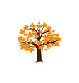 autumn tree icon design template isolated vector image vector image