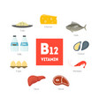 cartoon food with vitamin b12 infographics vector image