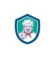 Chef Cook Happy Thumbs Up Shield Cartoon vector image vector image
