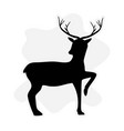 deer isolated symbol christmas holiday season vector image vector image