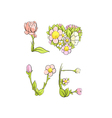 love by delicate flowers vector image vector image
