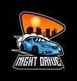 night drive vector image
