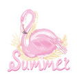 pink flamingo vector image vector image