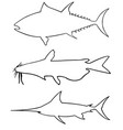 set different big fish silhouettes vector image
