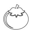 tomato vegetable ingredient health icon vector image
