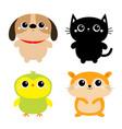 black cat dog hamster parrot bird toy icon set vector image