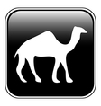 Camel button vector image vector image