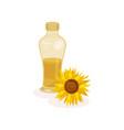 glass bottle of fresh oil and sunflower vector image