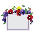 pansies card vector image