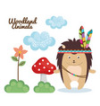 porcupine woodland animal with feather crown vector image