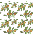 Seamless flat argan fruits pattern vector image vector image
