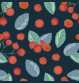 seamless pattern of cranberry vector image vector image
