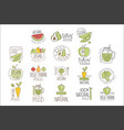 vegan raw and healthy food promo labels collection vector image vector image